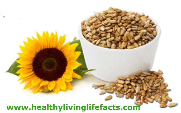 sunflower-seeds-Plant-Based Protein