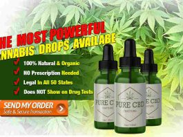 Cannabis Hemp Oil
