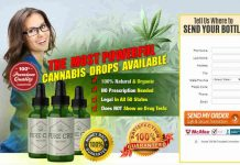 CAN CBD OIL GET YOU HIGH : Pure CBD Oil,