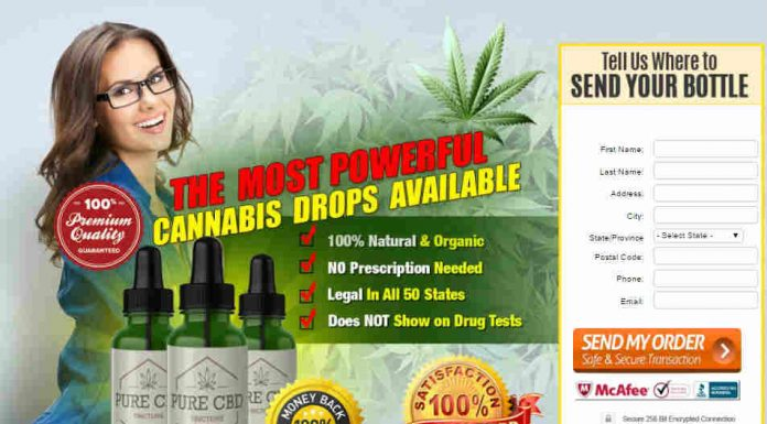 Best CBD Oil Reviews