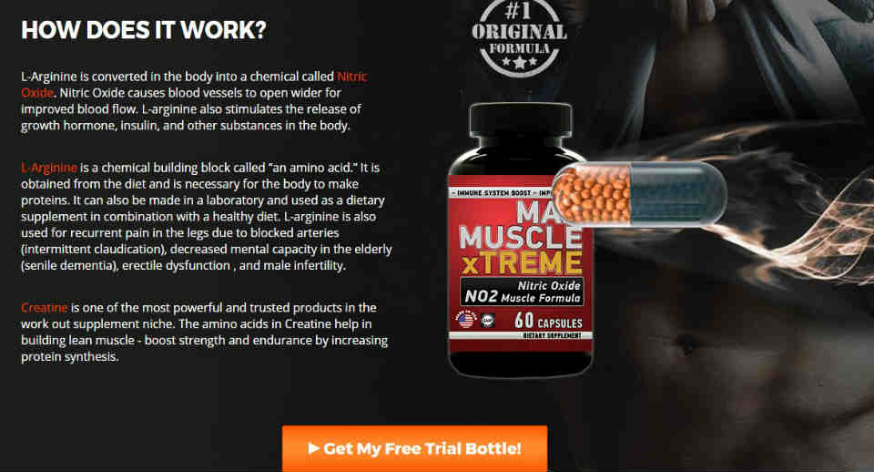 Max Muscle Extreme Ingredients