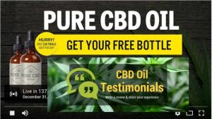 cbd-hemp-oil-review