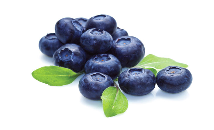 Blueberries EYESIGHT SUPERFOODS