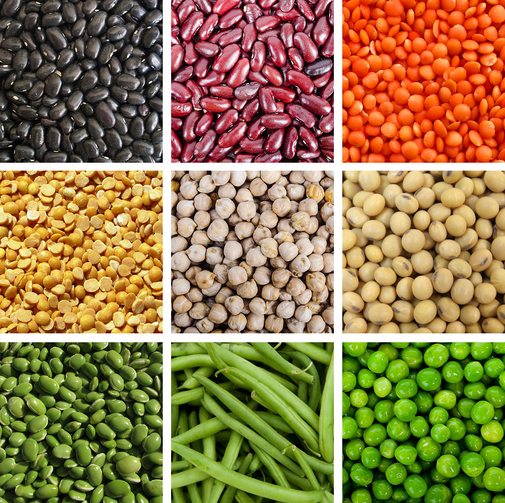 LEGUMES EYESIGHT SUPERFOODS