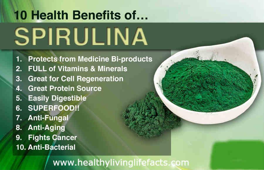 spirulina - Plant-Based Protein