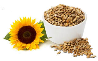 Sunflower-Seeds EYESIGHT SUPERFOODS