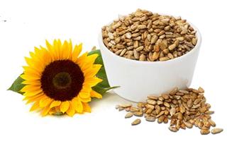 Sunflower-Seeds EYESIGHT SUPERFOODS