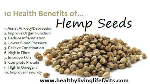 hemp-seed- Plant-Based Protein