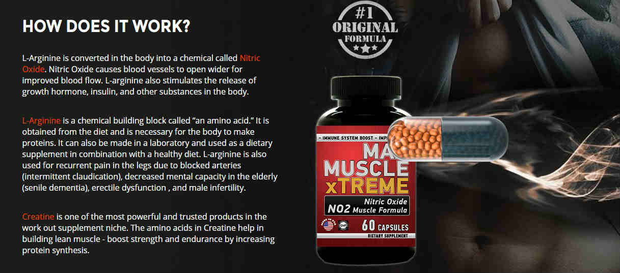 how-does-it-work Max Muscle Xtreme and Max Test Ultra Testosterone