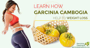 garcinia-cambogia–any-side-effects