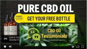 cbd-hemp-oil-review