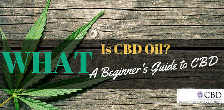 CBD OIL BEGINNERS GUIDE