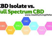 CBD Isolate vs Full Spectrum CBD