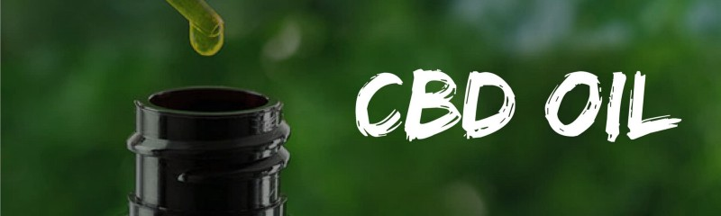CBD Oil Popularity : Why CBD Is Growing Rapidly In Popularity